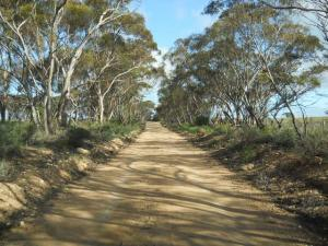 Murray Plains Cycle Trek