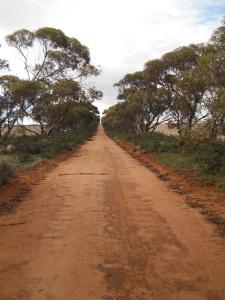 Murray Plains Cycle Trek